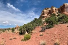 Neck-Spring-Trail-5