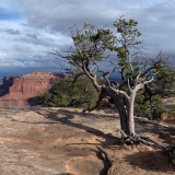 B-Canyonlands-National-Park-Island-in-the-Sky-District