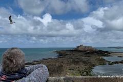 Blick hinüber zum Fort National