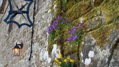 Von-alten-Kultstätten-und-mittelalterlichen-Dörfern-15