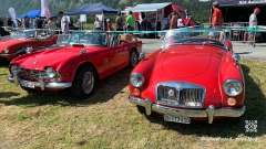British-Car-Meeting-Mollis-26