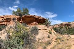 Neck-Spring-Trail-7