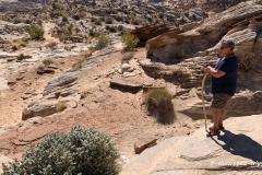 Horseshoe-Canyon-70