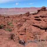 A-Fisher-Towers