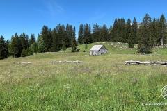 B-Ammler-Höhenweg